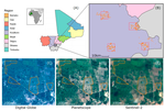 Sight for Sorghums: Comparisons of Satellite- and Ground-Based Sorghum Yield Estimates in Mali
